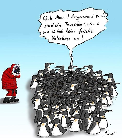 Pinguintag17